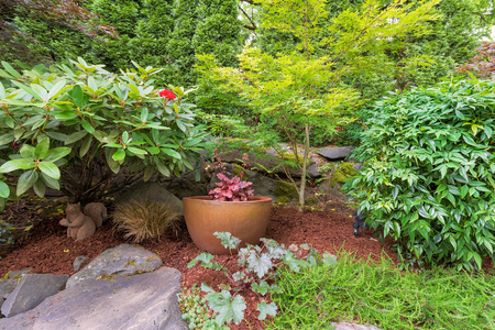 coral bell: Backyard Garden landscaping gold container pot with plants shrubs trees rocks and bark dust