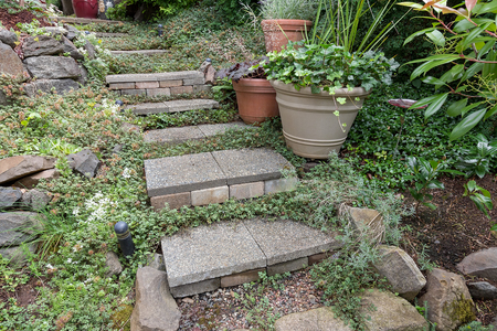 groundcover: Cement stone steps with groundcover potted plants rocks bricks gravel leading to garden backyard