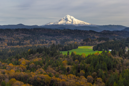 mount hood national forest: Mount Hood over Barlow Trail Route from Jonsrud Viewpoint in Sandy Oregon Stock Photo