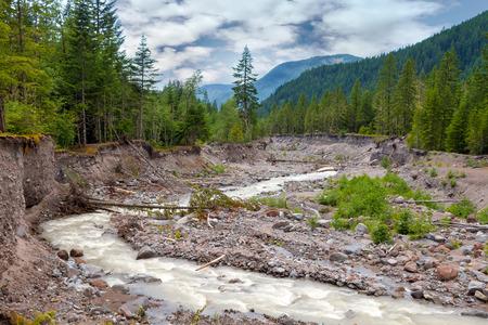 mount hood national forest: Sandy River in Mount Hood National Forest in Oregon during summer season Stock Photo