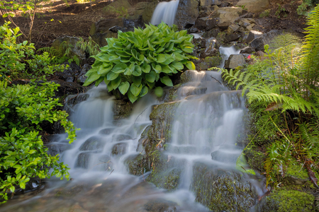 Waterfall at Crystal Springs Rhododendron Garden in Portland Oregon during Spring Season Stock Photo