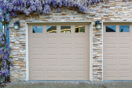 Wisteria Flowers In Full Bloom By House Front Garage Doors In