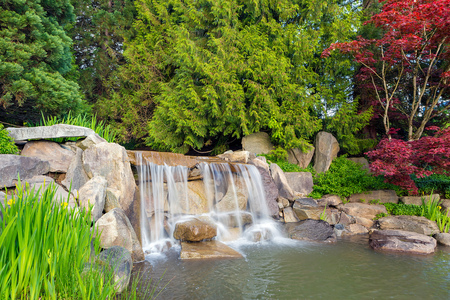 Garden backyard landscaping with rocks boulders waterfall trees and plants