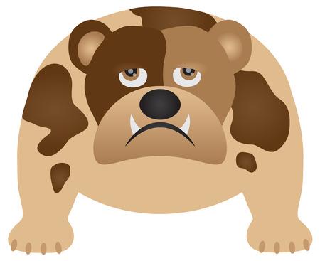 Englische Bulldogge lokalisiert auf weißer Hintergrundfarbillustration
