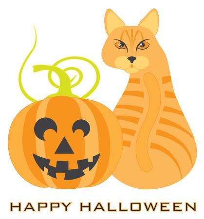 Halloween Orange Tabby Cat sitting looking back with Jack-O-Lantern Pumpkin illustration