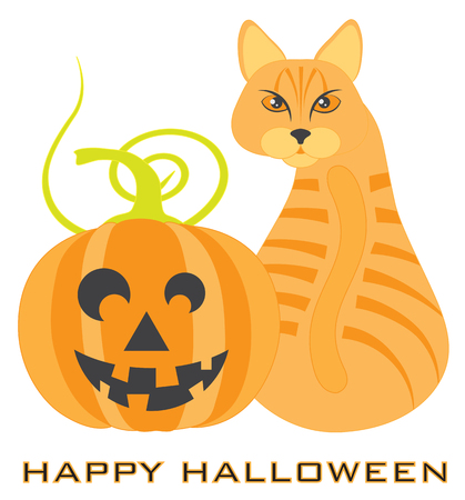 Halloween Orange Tabby Cat sitting looking back with Jack-O-Lantern Pumpkin illustration