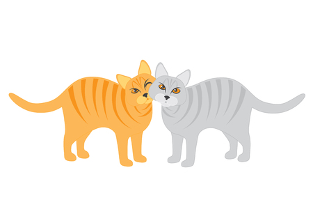 Pair of Calico and Tabby Cats Snuggling isolated on white background illustration