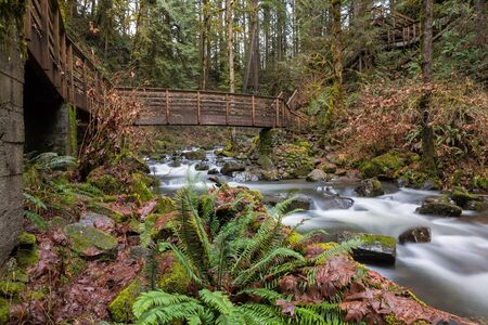 Bridge and stairs along hiking trail in McDowell Creek Falls County Park in Oregon
