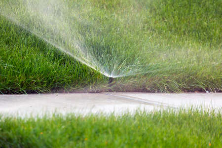 Sprinkler system head watering green grass lawn closeup Stock Photo