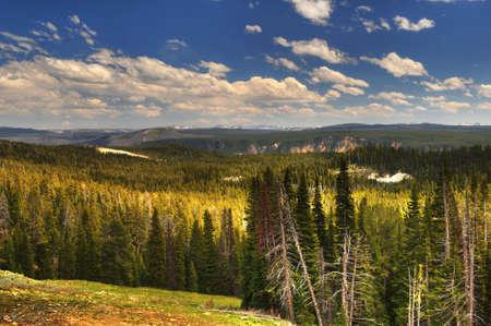 Heart of the Caldera-Yellowstone Фото со стока - 15027306