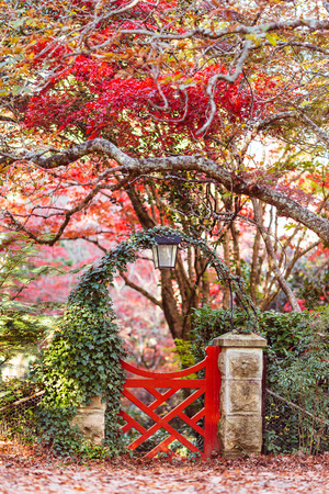The red gate of the japanese garden Stock Photo