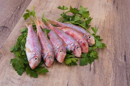 delicious and fresh red mullets with parsley