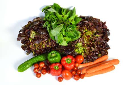 market gardener: Vegetable assortments with salad, tomato, carrot, basil, cucumber.