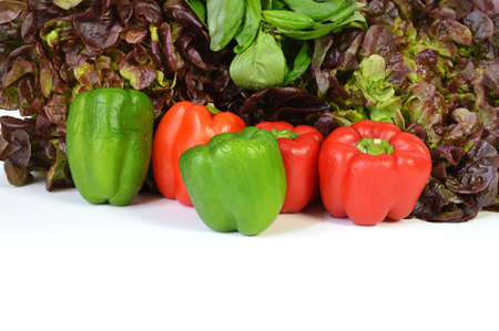 market gardener: A pepper assortment with salad and aromatic plant.