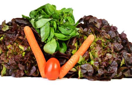 market gardener: Vegetable assortments with salad, tomato, carrot, basil.