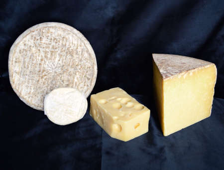 terroir: Assortment of mountain cheese. Cantal, Emmental, Cabicou and Saint Nectaire.