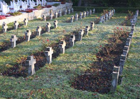 Cross Headstone Rows 版權商用圖片