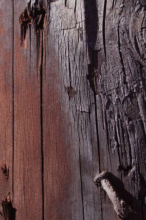 Charred Nail Фото со стока