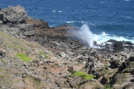 orificio nasal: Nakalele espir�culo en Maui Hawaii
