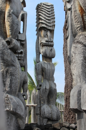 tribal park: Tiki Statues on Big Island Hawaii