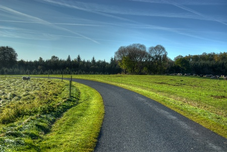 roadsides: Country road