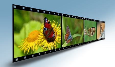 Filmstrip with butterflies photo