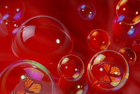 Soap bubbles with butterflies inside photo