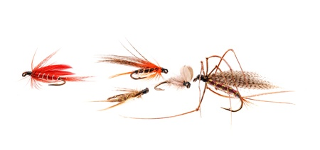 Trout Flies. photo