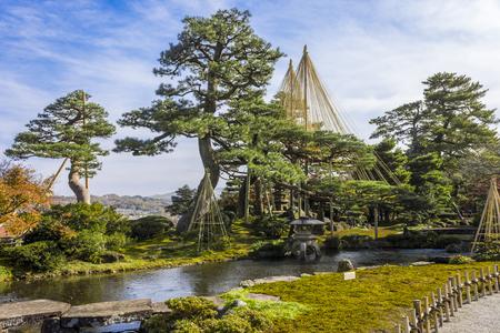 Yukitsuri (ropes for preserving trees) in Kenroku-en (Six Attributes Garden), one of the Three Great Gardens of Japan, located in Kanazawa, Ishikawa Prefecture Sajtókép