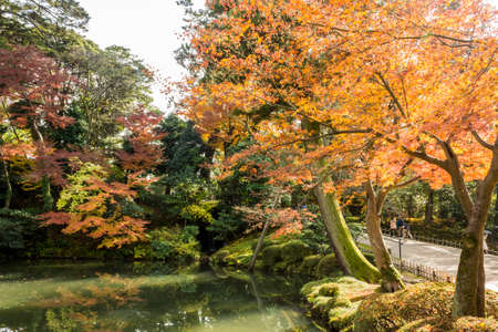 Kanazawa, Japan. Kenroku-en, an old private garden, and one of the Three Great Gardens of Japan (Nihon Sanmeien), during autumn