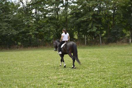 uomo a cavallo: cavaliere Editoriali