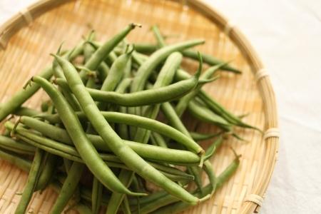 common bean: japanese summer vegetable, common bean