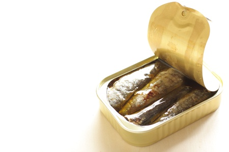 sardine can: can sardine fish with copy space Stock Photo