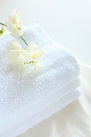 Sweet pea on new white towel for laundry and house keeping image photo