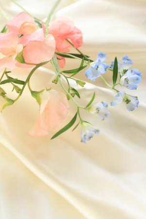 Delphinium and sweet pea on silk for background image photo