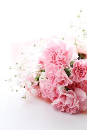 エレガントなピンクのカーネーション母の s 日の画像