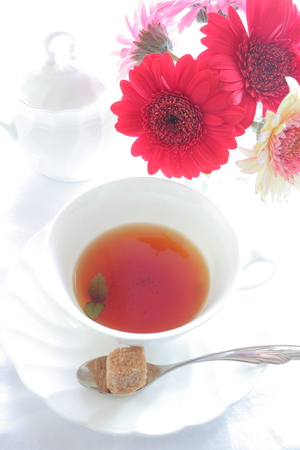 Gerbara and English tea with brown sugar photo