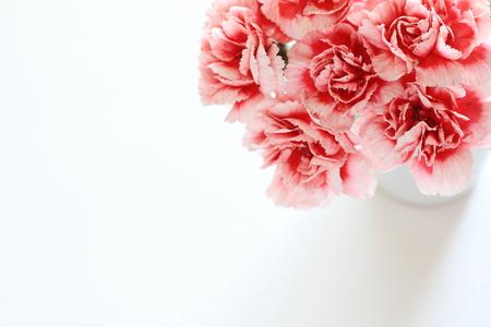 흰색과 어머니의 날 이미지의 바이 컬러의 카네이션 꽃다발을 선택