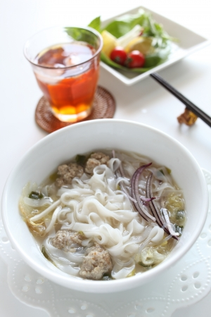 vietnamese food: Vietnamese food, meat ball and rice noodles