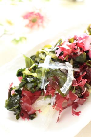 海藻サラダのクローズ アップ 写真素材