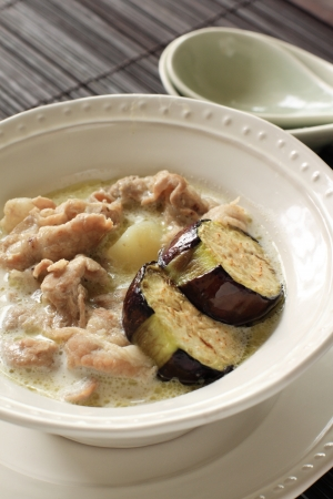 Thai cuisine, green pork curry photo