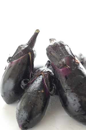 Eggplant on white background with copy space
