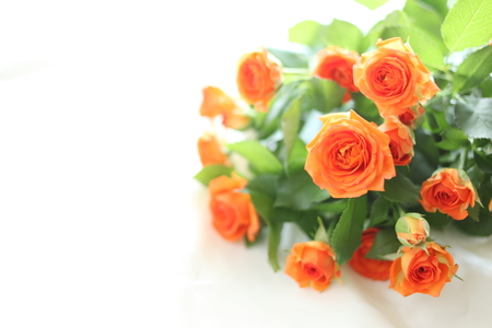オレンジ色のバラのブーケ