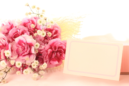 Mother s day carnation and present 版權商用圖片 - 24494856
