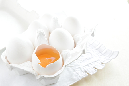 white egg in carton with copy space Stock Photo