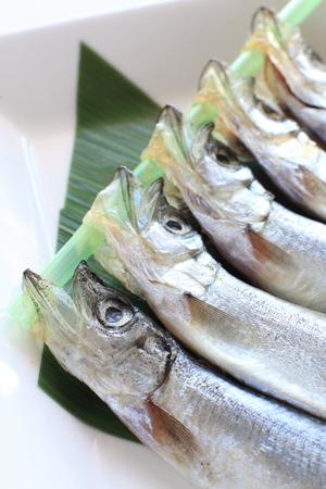 lanceolatus: Close up of Japanese food dried shishamo fish Stock Photo