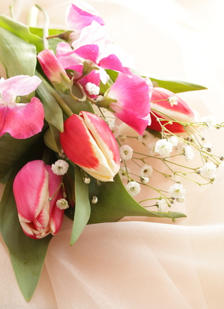 sweet pea flower: Turnip and sweet pea for spring flower image