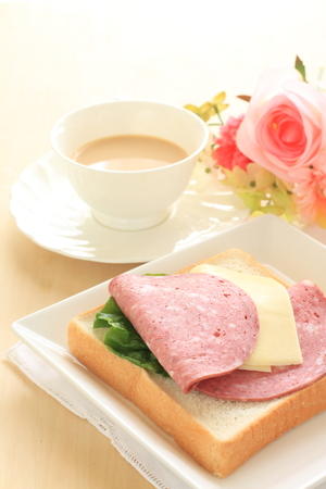 salame: salame sausage and cheese for open sandwich image Stock Photo
