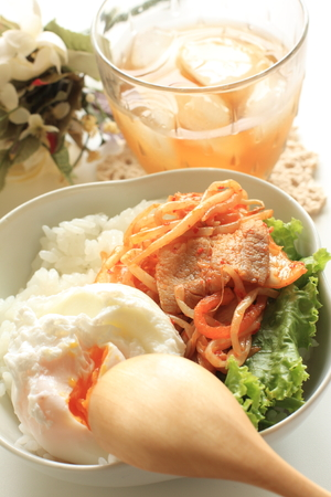 poached: Korean food, stir fried pork and poached egg on rice