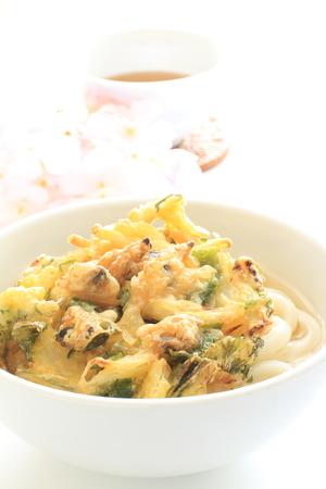 almeja: Comida japonesa, almeja y verduras tempura udon